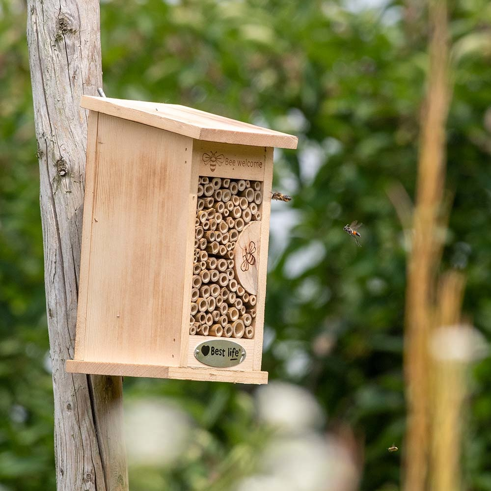 Wildbienenhotel Fernandina (4 Stück)